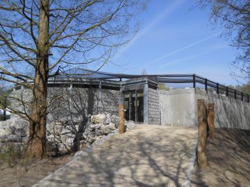 Verblijf chiliflamingo's en humboldtpinguïns (Planckendael Mechelen)